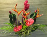 Tropical Flowers Express