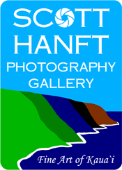 Scott Hanft Photography