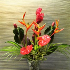 Tropical Flowers Express photo